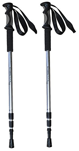 BAFX Products - 2 Pack - Anti Shock Hiking / Walking / Trekking Trail Poles - 1 Pair, Silver