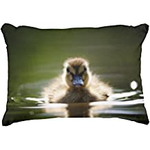 Zazzle Mallard Duckling Denness Accent Pillow