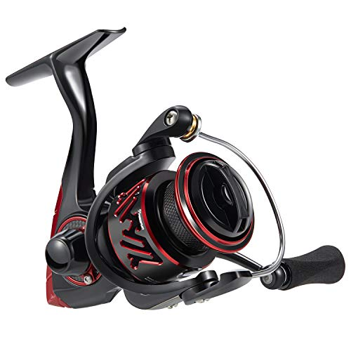 (Piscifun Honor XT Fishing Reel - New Spinning Reel - 5.2:1, 6.2:1 High Speed Gear Ratio - 10+1 Stainless Steel Bearings - Freshwater and Saltwater Spinning Fishing Reels (Size 1000)