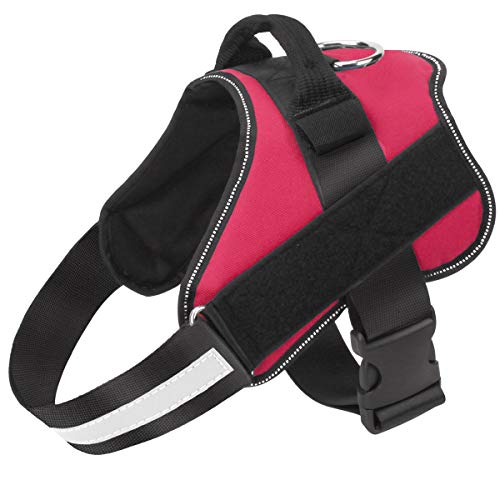 Dog Harness No Pull Reflective Adjustable Pet Vest with Handle for Outdoor Walking- No More Pulling, Tugging or Choking(Red,M) (Best Non Pull Dog Harness)