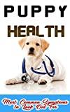 Puppy Health: Most Common Symptoms to Look Out For