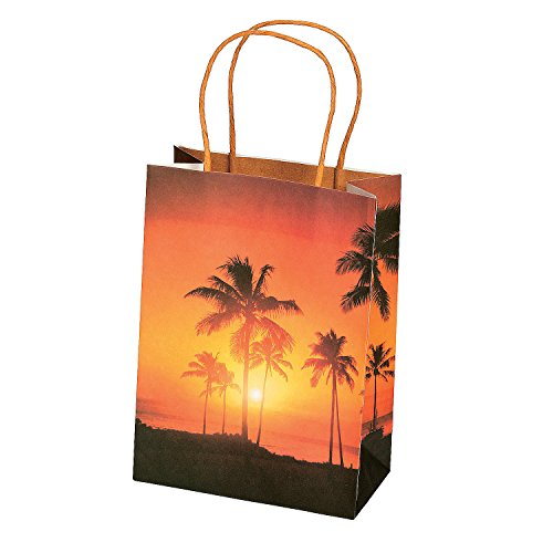 Fun Express Island Luau Gift Bags | 12 Count | Great for Luau or Summer Themed Event, Hawaiian Birthday Party, Prizes & Favors]()