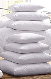 Multiple Sizes- Polyester Pillow Inserts with Zippered Cover - 10x10\