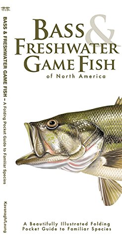 Bass & Freshwater Game Fish: A Folding Pocket Guide to Popular North American Species (A Pocket Naturalist - Waterford Map Lakes
