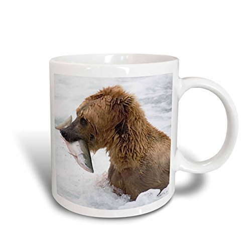 3dRose Brown Grizzly Bear with Salmon, White Water, Katmai National Park, Alaska, Ceramic Mug, - Bear Grizzly Pic