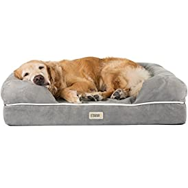 Dogs - ThePetFurnitureStore