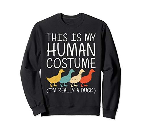 Diy Black Swan Halloween Costume (Duck Halloween Human Costume Mallard Dipper Easy DIY Gift)