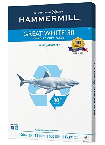 Hammermill Great White Copy Paper, Ledger Paper, 20 Lb, 30% Recycled, 500 Sheets Per Ream, Case of 5 Reams by Hammermill (Image #2)