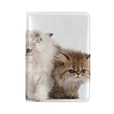 accaebc4cb58 Animal Cat Kitten White Mix Small Fluffy Cute Pet Leather Passport ...
