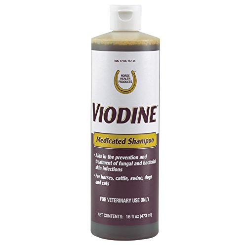 Horse Health Viodine Medicated Shampoo, 16 fl oz