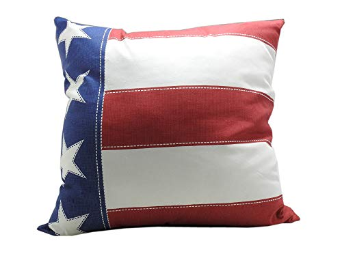 Americana Pillow Lot of 2, 24