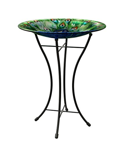 Glass Birdbath With Solar Light
