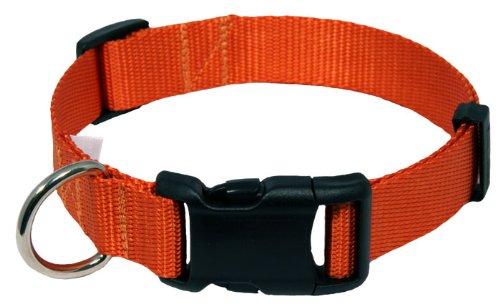 Country Brook Design Deluxe Nylon Dog Collar - Orange - Small