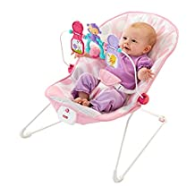 Fisher-Price Baby's Bouncer-Pink Ellipse