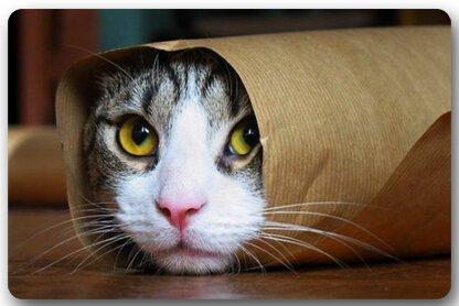 Lovely gato felpudos cubierta antideslizante lavable a máquina interior y exterior para cuarto de baño decoración
