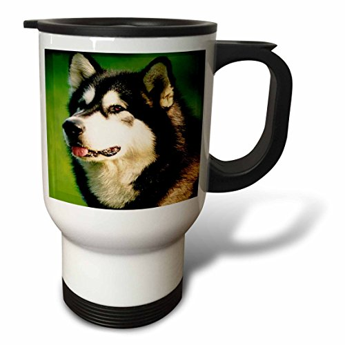 3dRose Alaska Malamute Dog Travel Mug, 14-Ounce