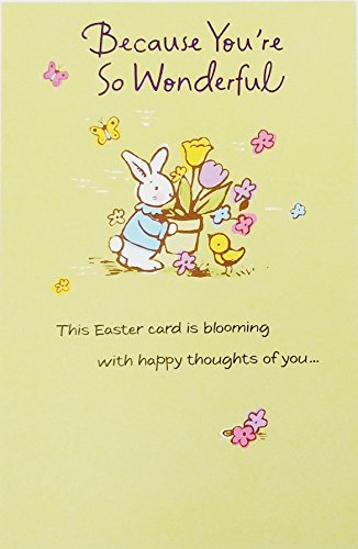 Because You're So Wonderful - Have a Nice Easter Greeting Card -