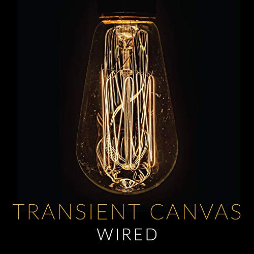 Price comparison product image Transient Canvas: Wired