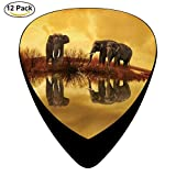 Celluloid Guitar Picks For Acoustic Guitar,Print Thailand Elephant Sunset Nature Animals,12 Pack