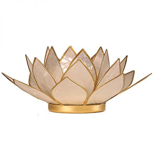 FindSomethingDifferent Lotus Tea Candle Light Holder Capiz Shell Pearl Gold Trim