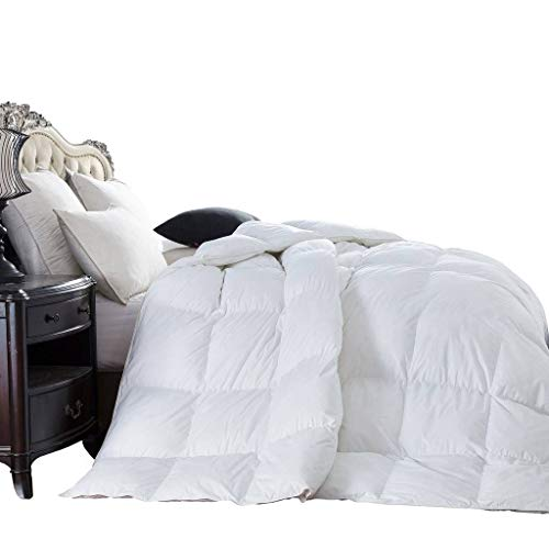 1200 Thread Count Full / Queen Size 1200TC Goose Down Alternative Comforter, 100% Egyptian Cotton, 750FP, White 1200 ()