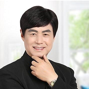 Amazon Com The Elderly Middle Aged Korean Man Hair Style Wig Hair