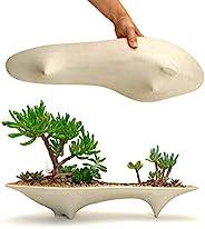 Island Concrete Modern Planter | long succulent planter