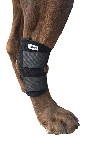 Labra Co. Dog Canine Rear Leg Hock Joint Wrap Protects Wounds as they Heal Compression Brace Heals and Prevents Injuries and Sprains Helps Arthritis