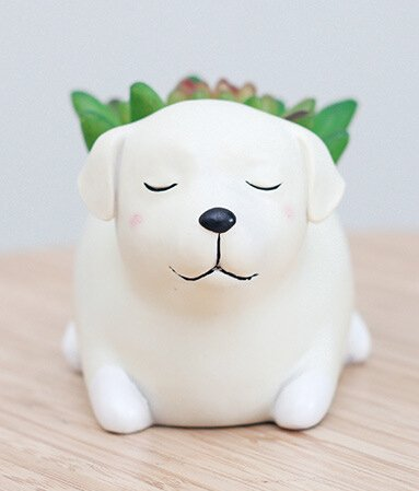 Cuteforyou Cute Animal Shaped Cartoon Home Decoration Succulent Vase Flower Pots (Labrador)