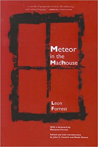 Image result for Leon Forrest, Meteor in the Madhouse,