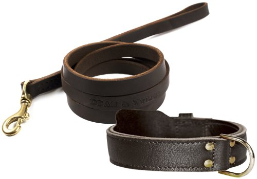 dean-and-tyler-bundle-one-simplicity-collar-30-inch-by-1-3-4-inch-with-one-matching-no-assumptions-l