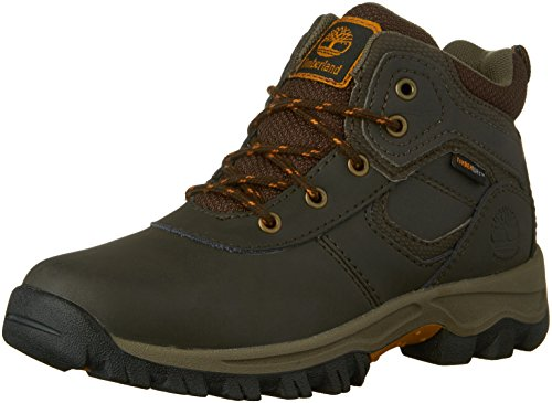 Timberland MT Maddsen Mid Waterproof Chukka Mid, Dark Brown, 5.5 M US Big Kid