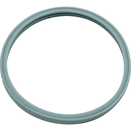 Pentair 614516 Hatteras Light Lens Gasket for Pool Star Pool or Spa Light by Pentair