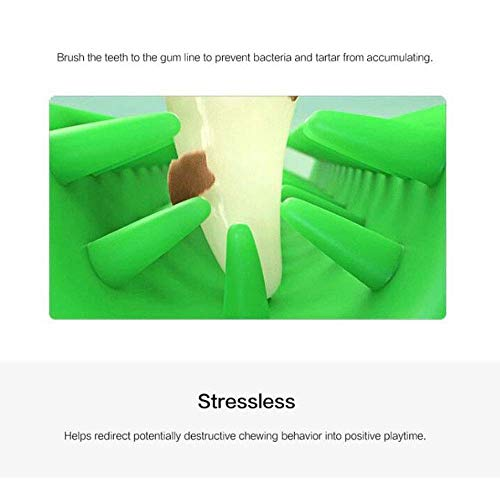 Amazon.com : HILIROOM Doggy Brushing Stick, Chew Dog Toothbrush, Nontoxic Rubber Chew Cleaning Interactive Dental Hygiene Brushes for Small to Medium ...