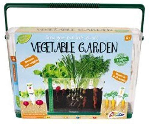 Kinder Bauen Sie Ihr Eigenes An Gemüse Garten In Transparentes Gehäuse RMS International