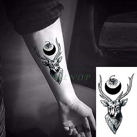 6pcs Tatuaje Impermeable Lobos Fox Buck Lobo Ballena León Hawk ...