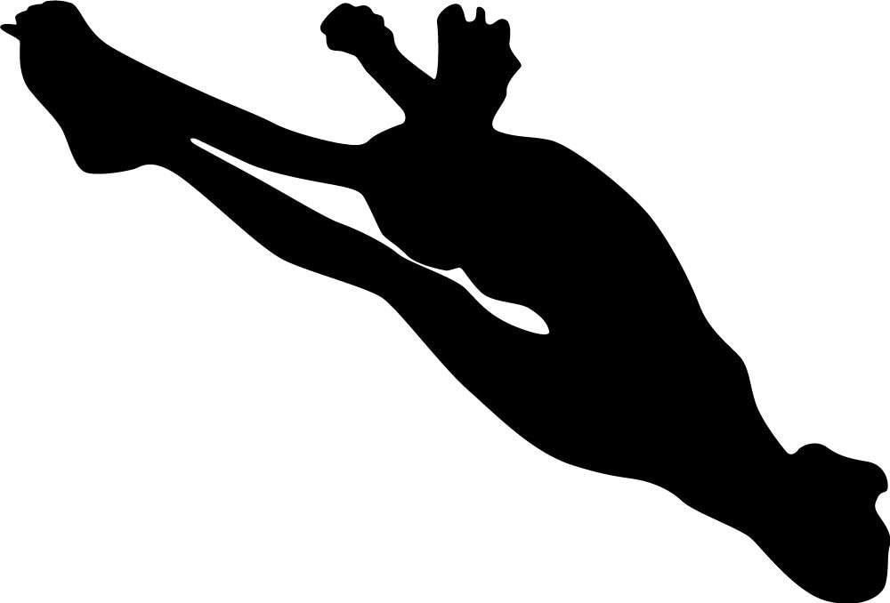 Details about  /Mizzli WALL DECAL Silhouette of girl in the leap Removable Vinyl Transfer 082