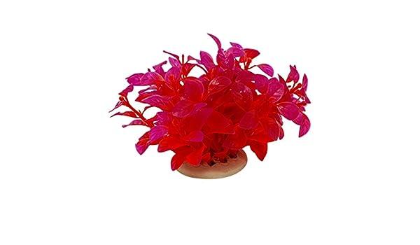 Sourcingmap Plástico Acuario Plantas/Agua de hierba, rojo/púrpura: Amazon.es: Productos para mascotas