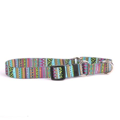 Stripe Martingale Dog Collar - Festival Stripes Martingale Control Dog Collar - Size Large 26