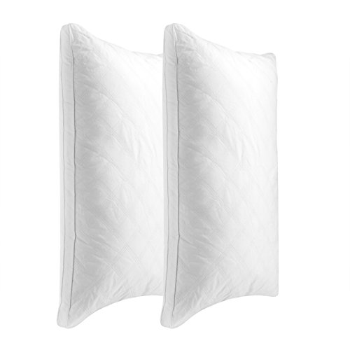 Sable Sleeping, 2 Pack Goose Down Alternative Quilted Bed Pillow, FDA Registered, Super Soft Plush...