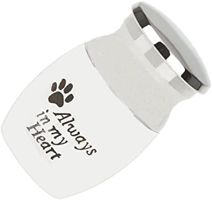 MiniJewelry Small Urn for Dog Cat Ashes Cremation Urns Keepsake Paw Print Always in My Heart 40mm Small