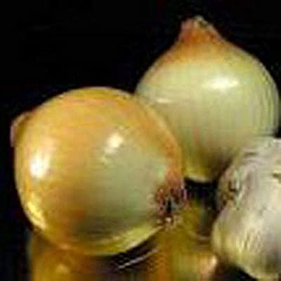 Walla Walla Sweet Onions-5-6 inch diameter!! -Extra Large white onions!! SWEET! (25 - Seeds): Garden & Outdoor