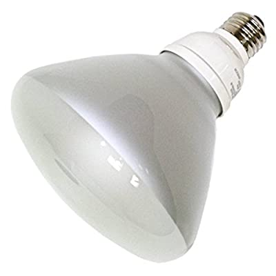TCP 1R401931K CFL R40 - 85 Watt Equivalent (19W) Warm White (3100K) Flood Light Bulb
