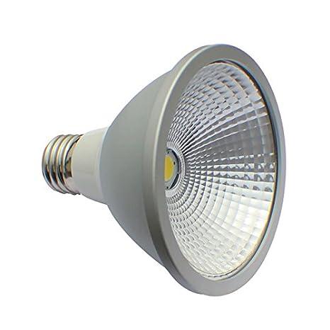 E27 10 W Par 30 LED Lámpara foco blanco neutro 4000 K blanco bombilla PAR30, COB: Amazon.es: Iluminación