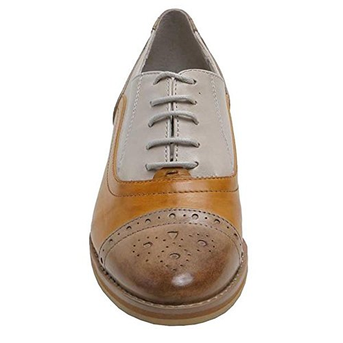 Ciel Camel Multi Laced Giovanna Regarde Oxford Le 8gn4F5wqU