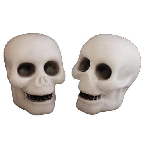 Halloween Light Decoration,Sulear Skull Color Changing LED Light (Couple Costumes Halloween Pinterest)