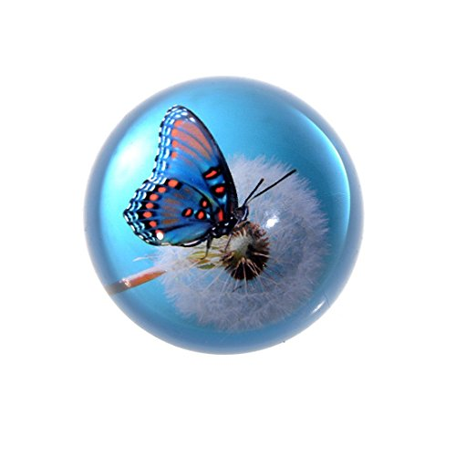 H&D Crystal Glass Dome Paperweight Hemisphere Ball Butterfly Paperweight for Home Decoration (Blue 1)