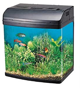 R331 20 litre capacity complete glass aquarium fish tank for 20 gallon fish tank size