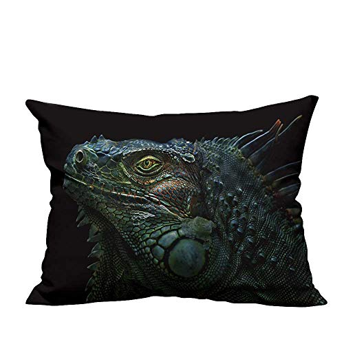 fengruihome Home Decor Pillowcase Green Iguana The Green Iguana is a Large,arboreal,Mostly herbivorous Species of Lizard Resists Stains(Double-Sided Printing) 19.5x60 inch