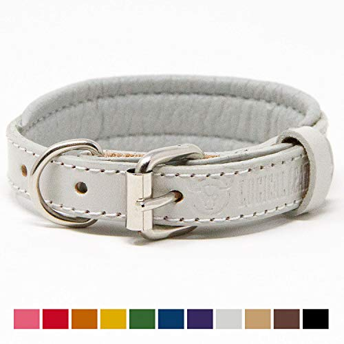 Logical Leather Padded Dog Collar - Best Full Grain Heavy Duty Genuine Leather Collar - White - Extra Small ()